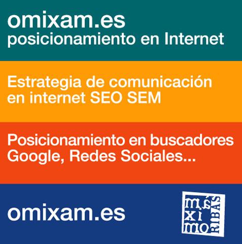 gráfico de presentación de omixam, seo y sem